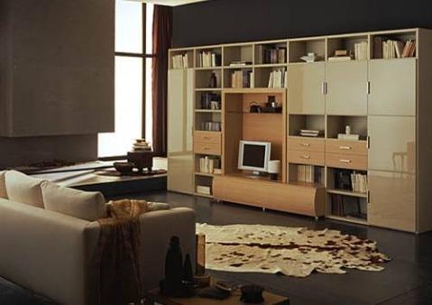 Мебельная стенка: система шкафов, стеллажей и полок